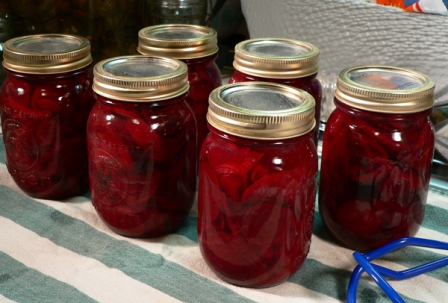 Photo credit: https://www.tasteofsouthern.com/wp-content/uploads/2012/06/Pickled-Beets_43_let-sit-overnight1.jpg